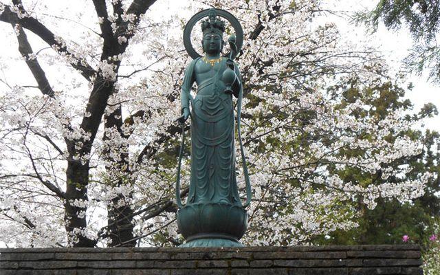弘光寺の画像2