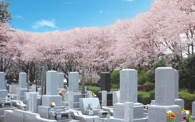 岡部霊園の画像4