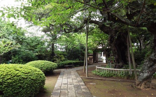 高根寺墓苑の画像4