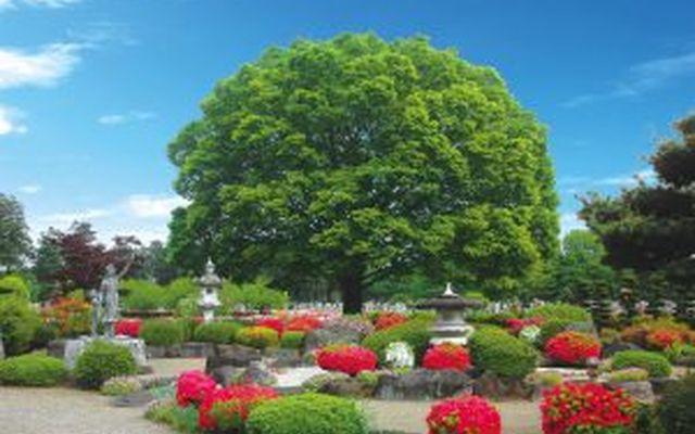 岡部霊園の画像5