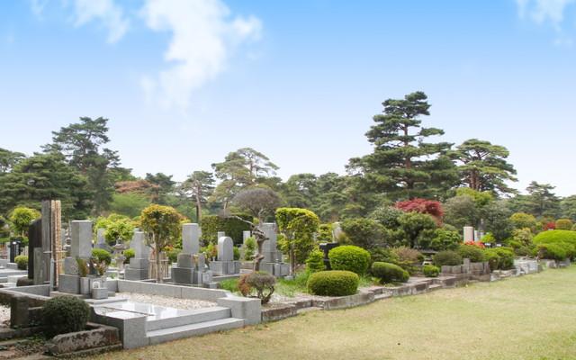 都立 小平霊園の画像3