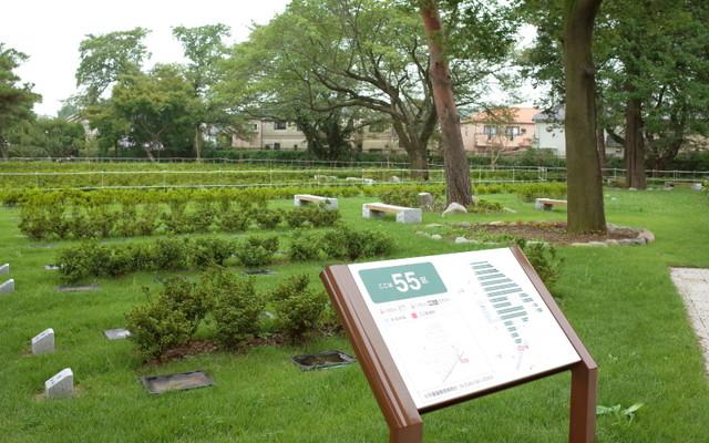 都立 小平霊園の画像4
