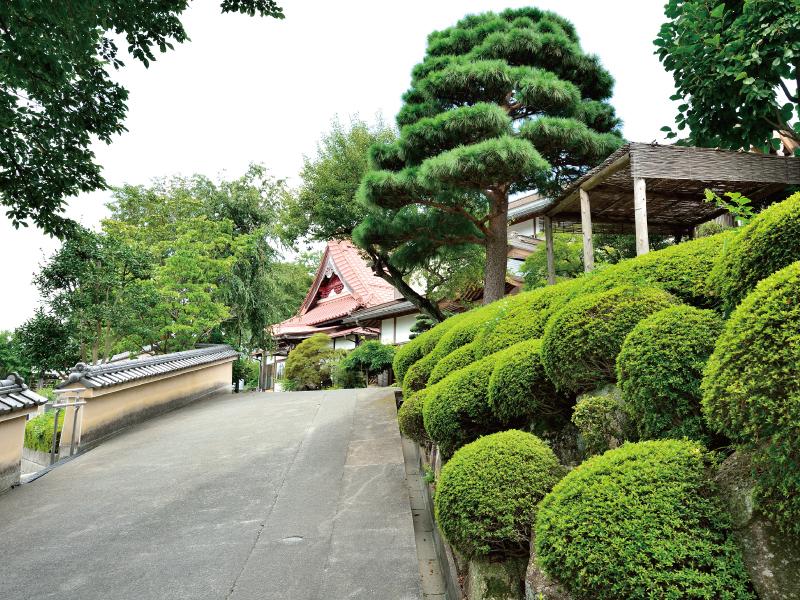 大泉寺墓所の画像4