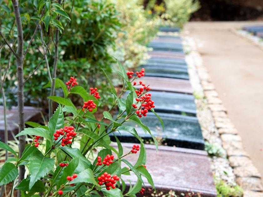 松戸庭苑の画像1