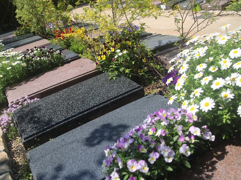 松戸庭苑の画像2