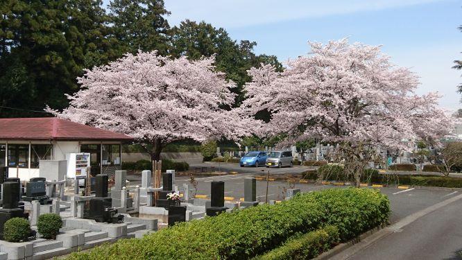 武蔵ヶ丘霊園の画像2