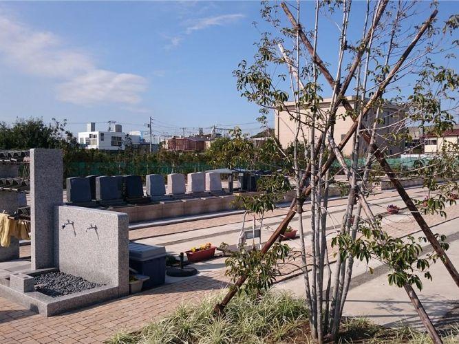 櫻乃里ふなばし聖地の画像1