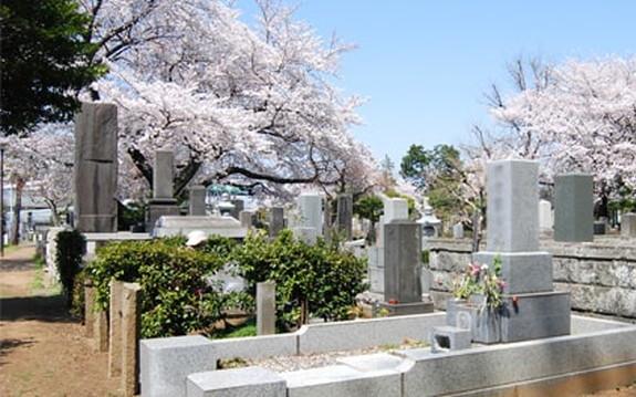 都立 染井霊園の画像1