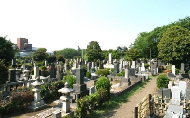 都立 染井霊園の画像3