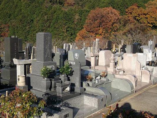 松戸市営白井聖地公園の画像1