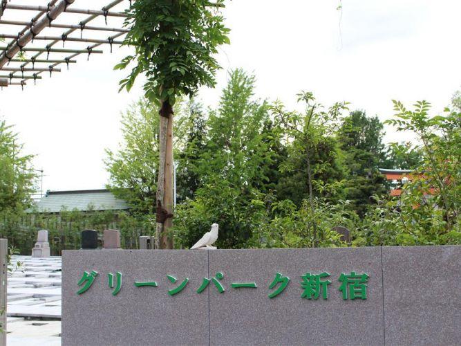 グリーンパーク新宿の画像2