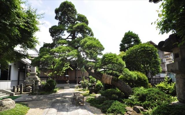 恵光メモリアル新宿浄苑の画像7