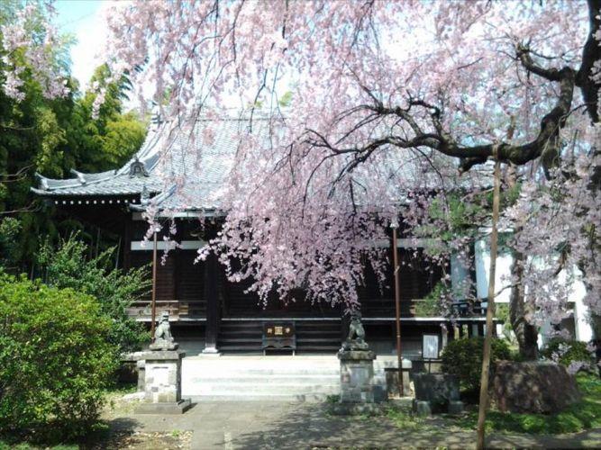 玄照寺の画像1