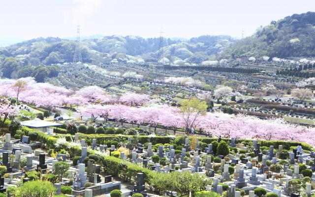 鎌倉霊園の画像1