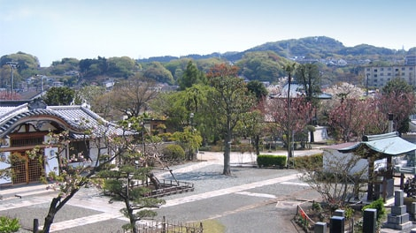 長谷山 海宝院の画像3