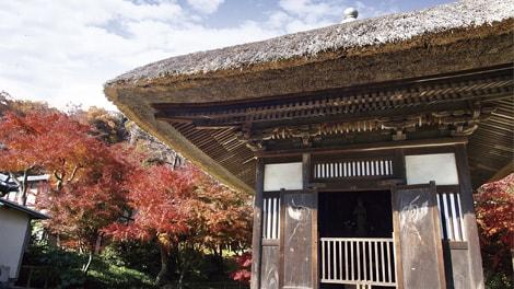 臨済宗建長寺派 長寿寺の画像4