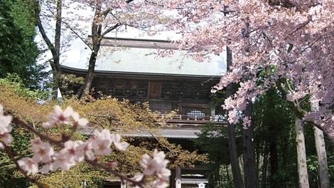 臨済宗大本山 円覚寺の画像2