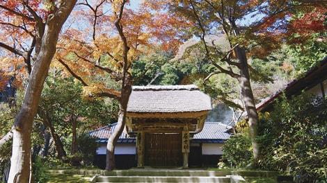 臨済宗大本山 円覚寺の画像3