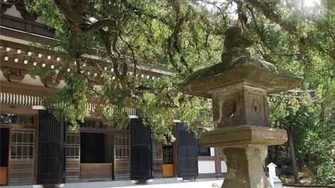 臨済宗大本山 円覚寺の画像4