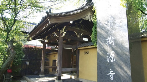 妙秀山樹源寺の画像1
