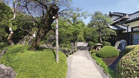 妙秀山樹源寺の画像3
