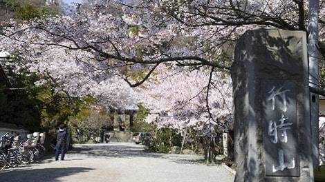 行時山 光則寺の画像1