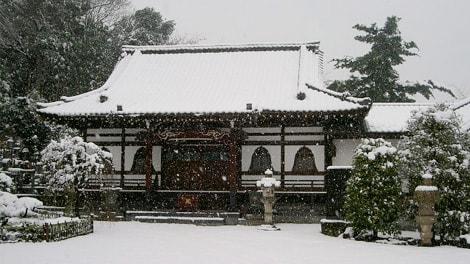 本長寺の画像4