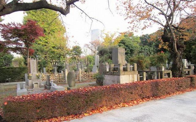 都立 青山霊園の画像1