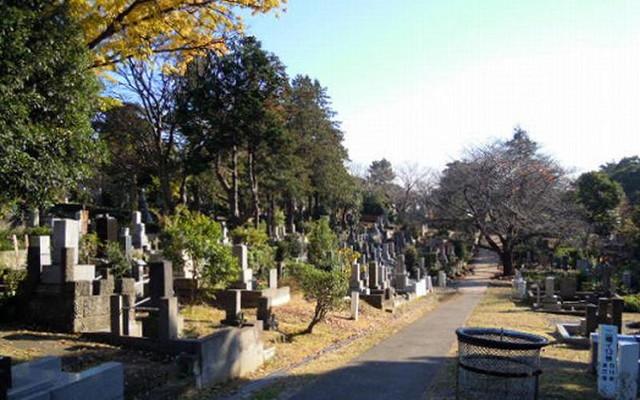 都立 青山霊園の画像2