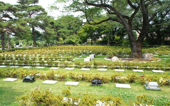 都立 小平霊園の画像7