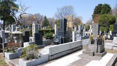 都立 雑司ヶ谷霊園の画像1
