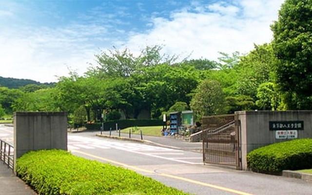 都立 八王子霊園の画像5