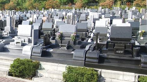 東京多摩霊園の画像2