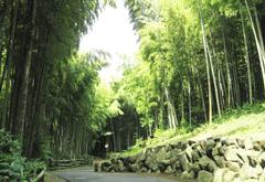 円海山メモリアル清浄園の画像2