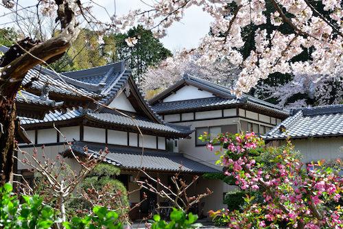 法巖寺 のうこつぼの画像6