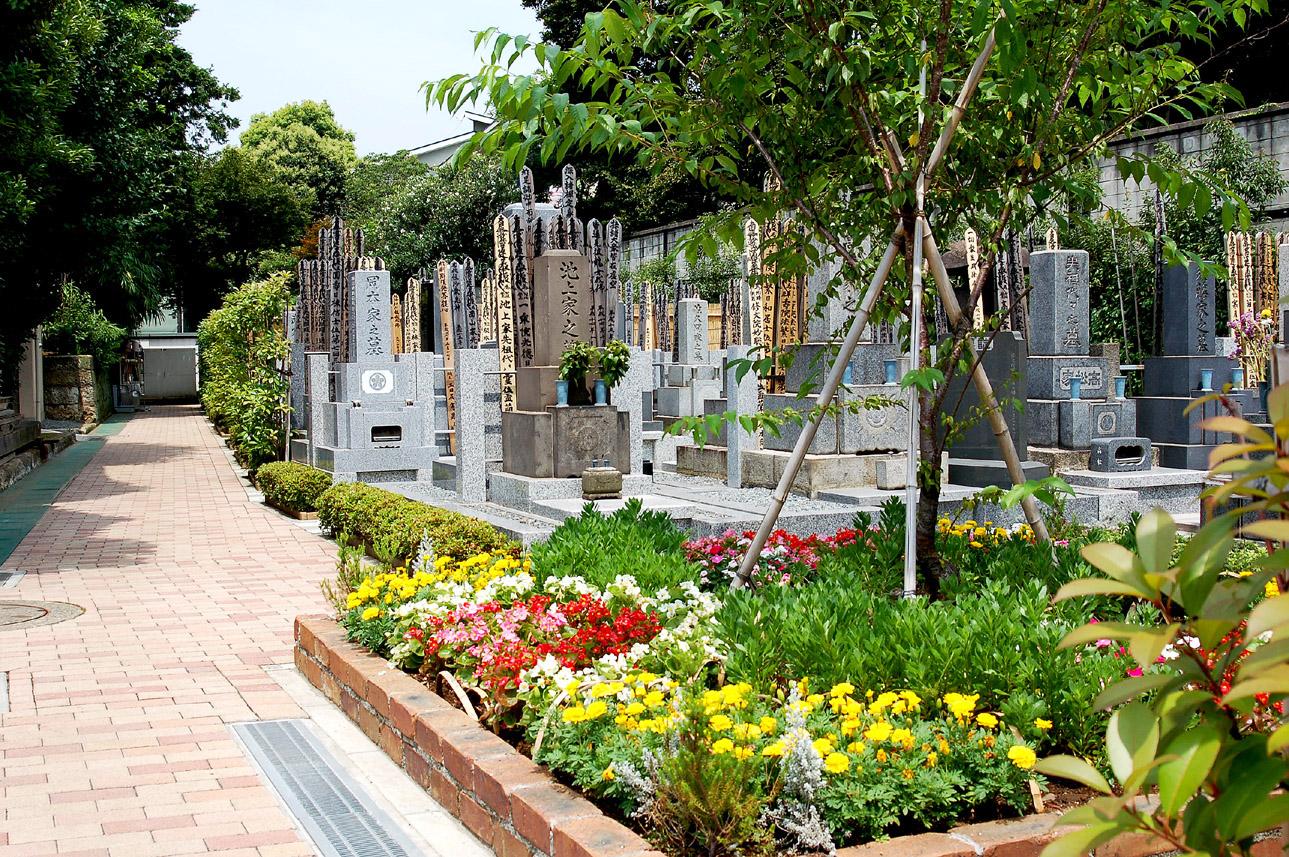 妙圓寺墓苑の画像2