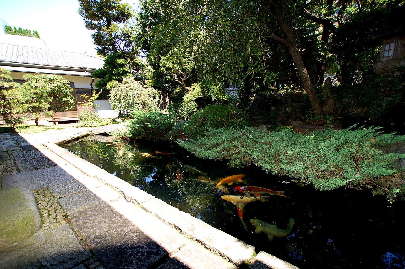 妙圓寺墓苑の画像9
