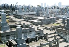 横浜市営 三ツ沢墓地の画像3