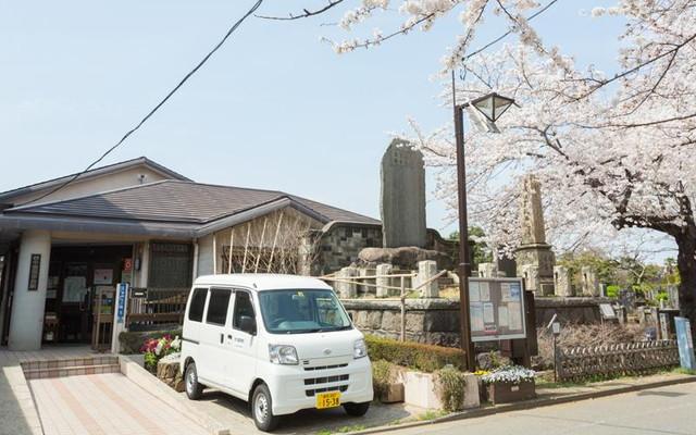 都立 谷中霊園の画像4