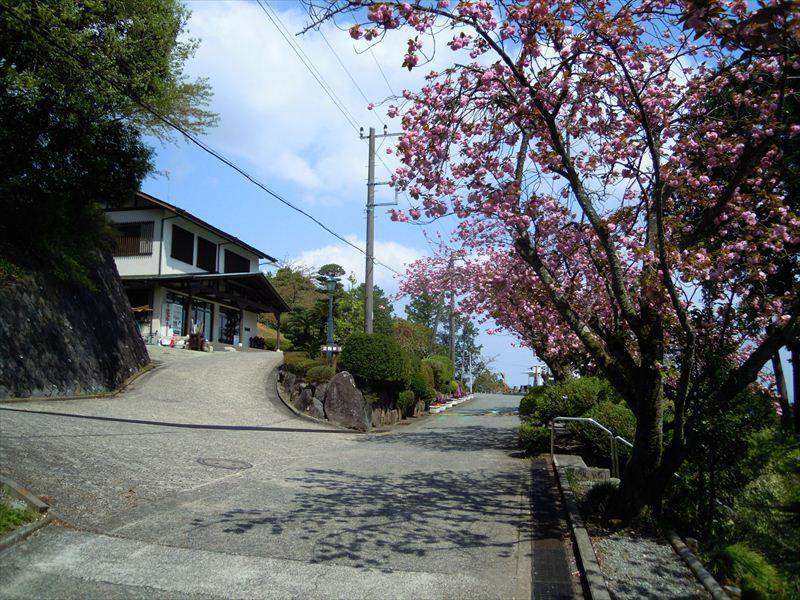 小田原市営 久野霊園の画像6
