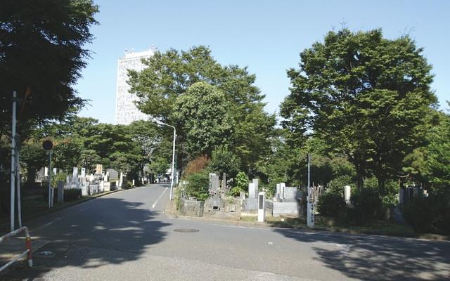 都立 雑司ヶ谷霊園の画像3