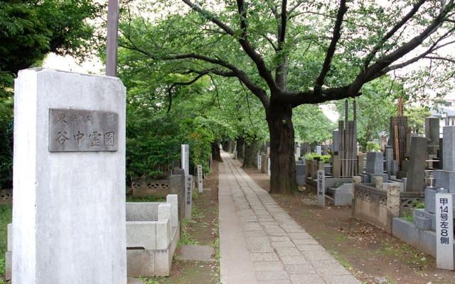 都立 谷中霊園の画像6