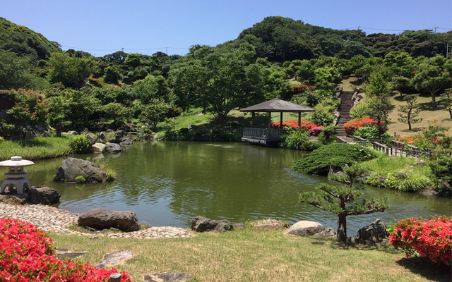 三浦霊園の画像6