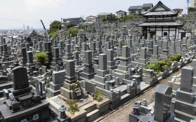 寿山霊園の画像3