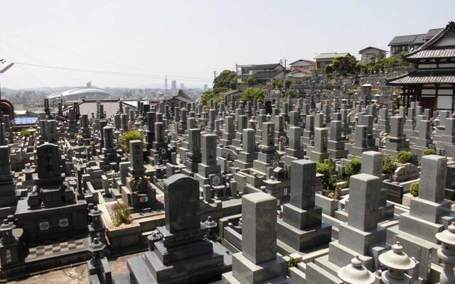 寿山霊園の画像4