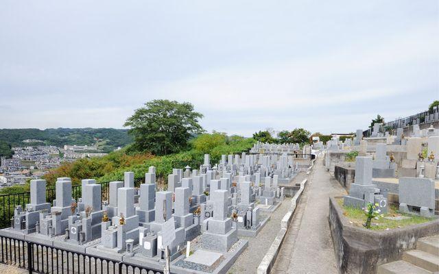 柏原国分ヶ丘墓苑の画像2