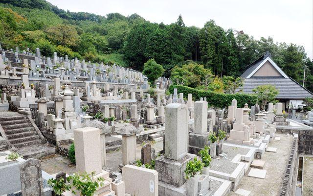 徳林寺墓苑の画像1