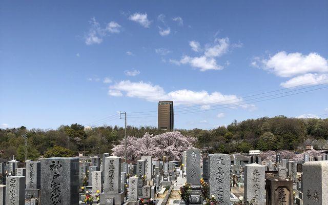 平和公園 養念寺の画像1