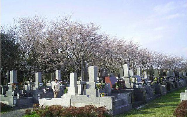 市原市営能満墓園の画像1