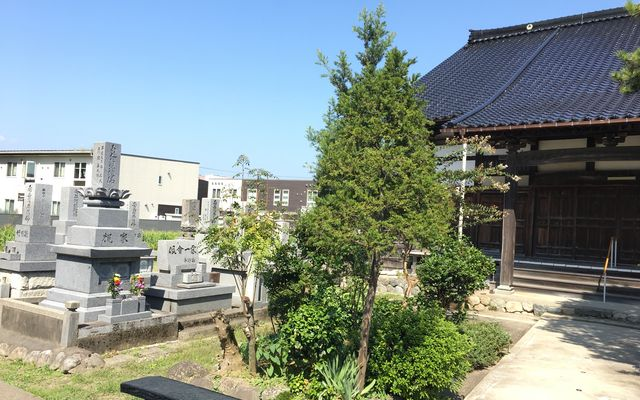 永念寺墓地の画像3
